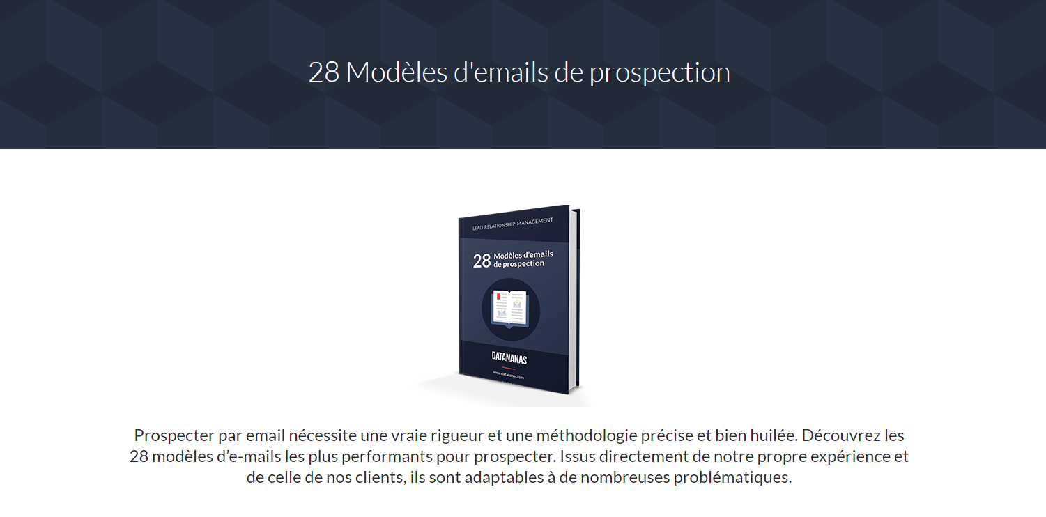 Marketing de contenu : Ebook Capture