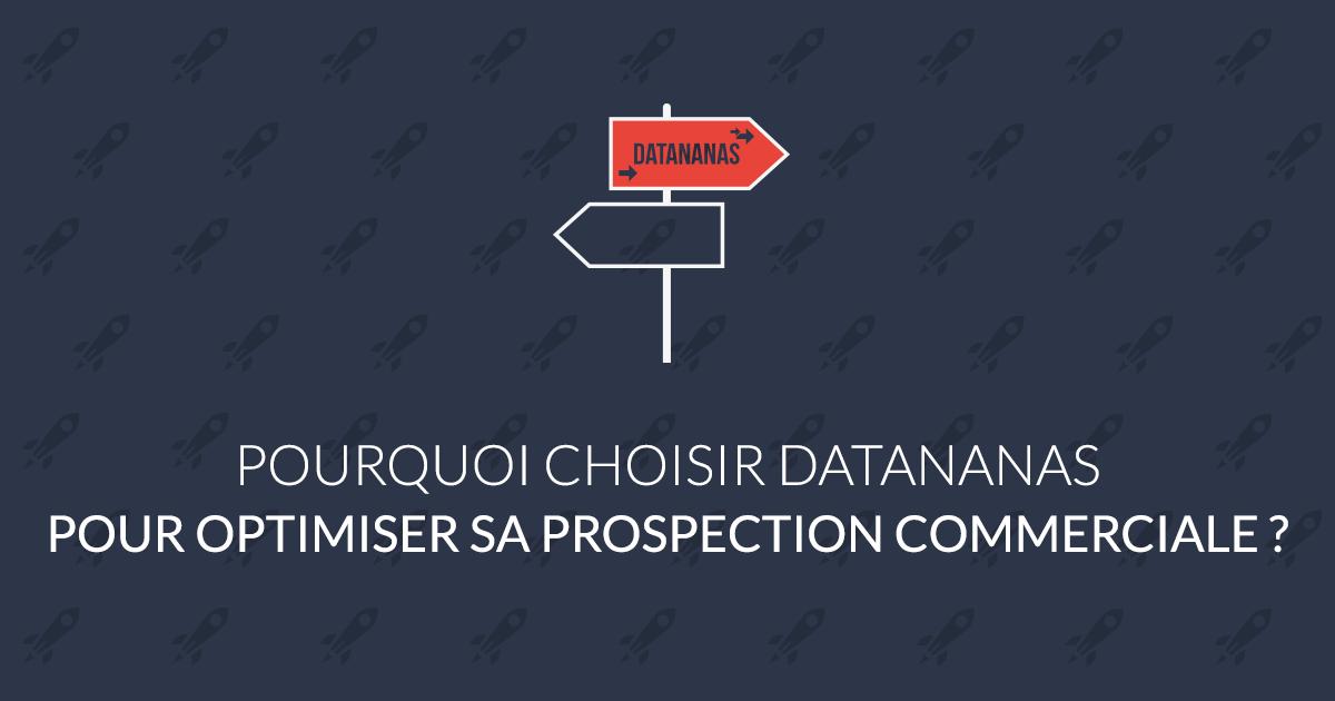 Optimiser sa prospection commerciale : pourquoi choisir Datananas ?